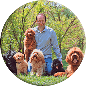 Man with dogs and puppies in the park round image