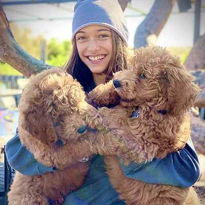 girl hugging two dogs