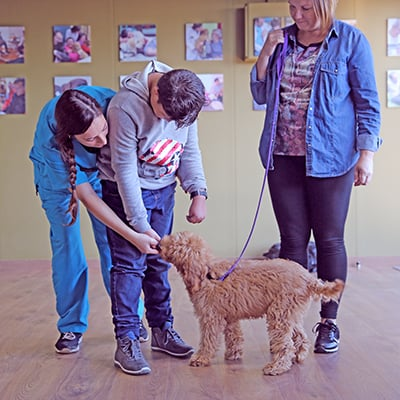 puppy training class with child, mother and trainer